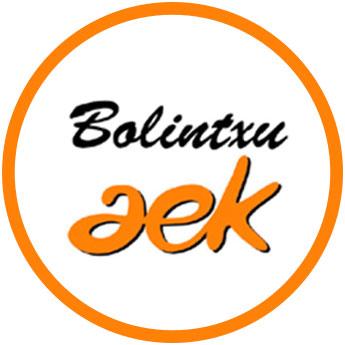 herri-batzordea-2020-logo-bolintxu-aek